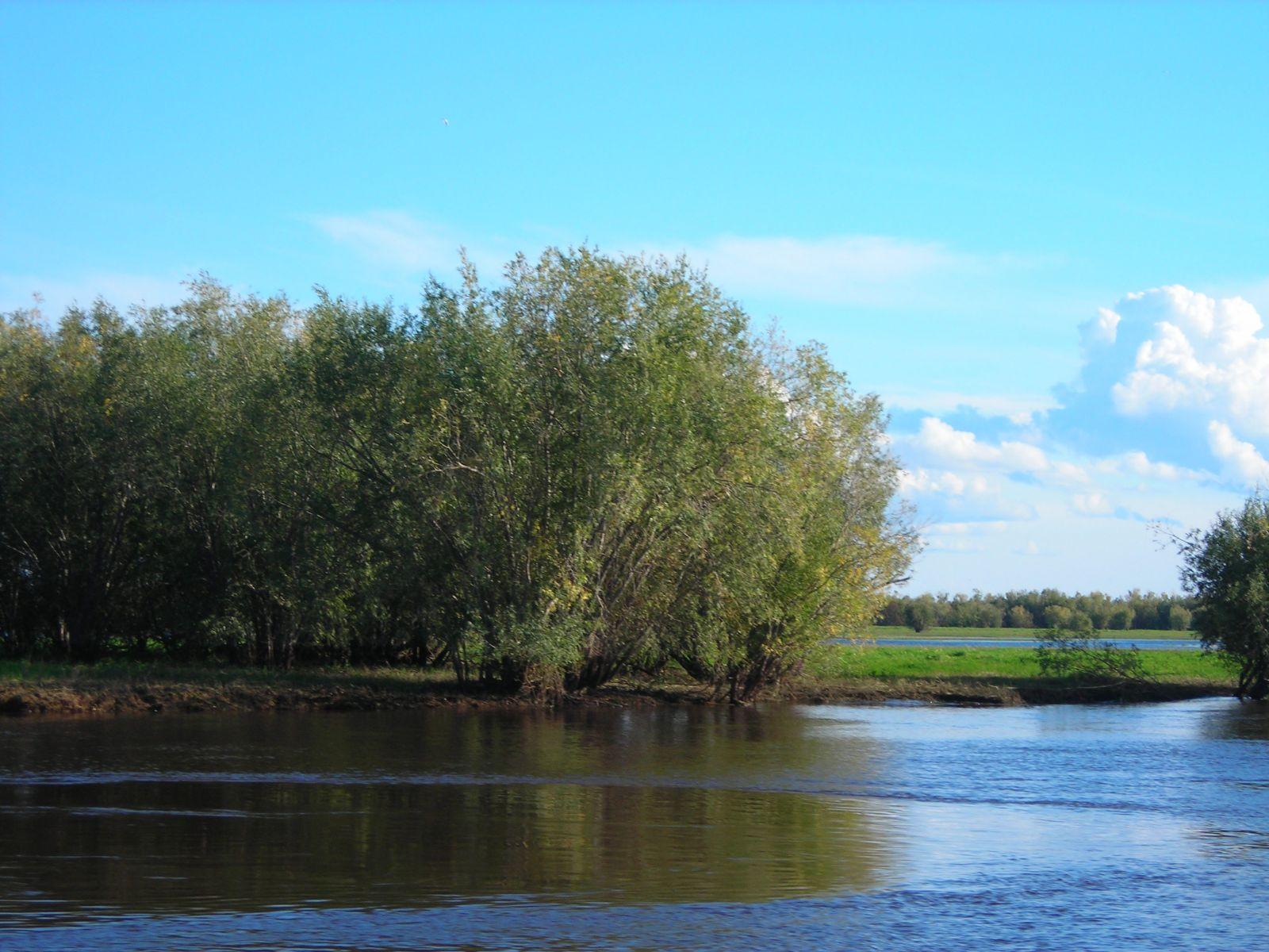 На богатой рыбой реке северная сосьва